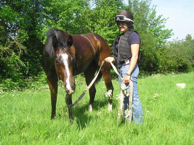 Racehorse grazing