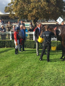 Knight Errant Sandown 2