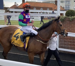Lady Bowthorpe Dahlia win 2